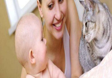 Kedi ve Köpeğe Alerjisi Olanlara Alerji Aşısı Yapılabiliyor!